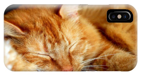 Naptime IPhone Case