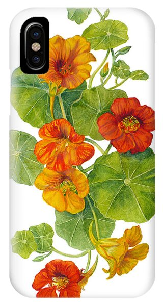 Nasturtiums - Tropaeolum Majus  IPhone Case