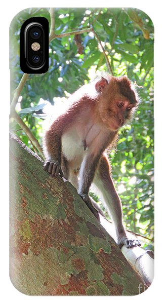 Native Palawan Monkey IPhone Case