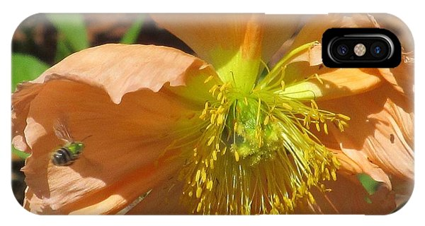 Natural Attraction IPhone Case