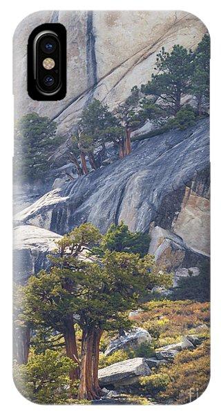 Natural Drama IPhone Case