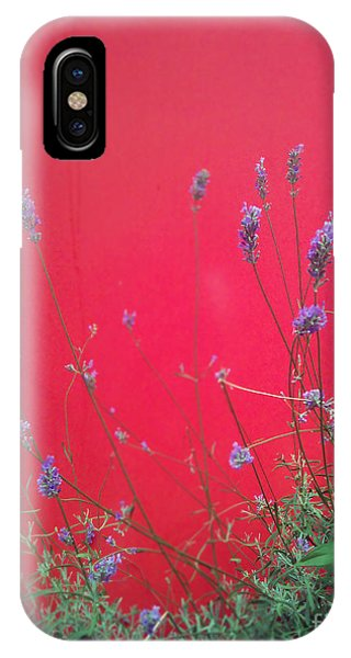 Nature And The City IPhone Case