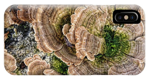 Nature Art IPhone Case