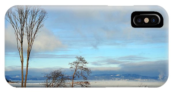Nature Dressed In Winter IPhone Case