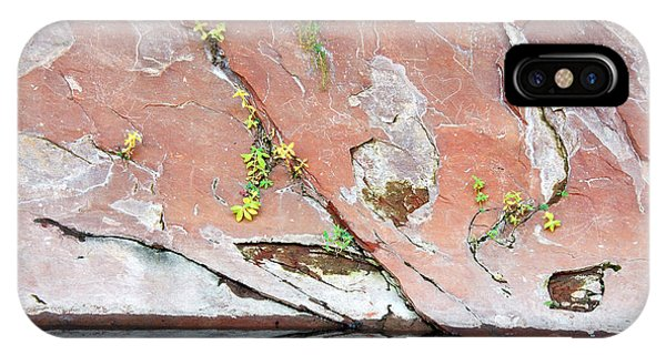 IPhone Case featuring the photograph Nature's Abstract by Tam Ryan