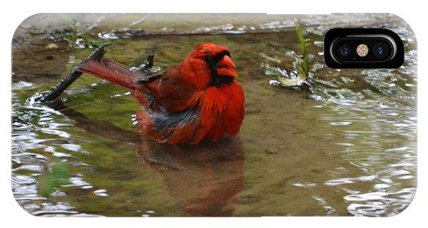 Natures Bird Bath Phone Case by Joe Bledsoe