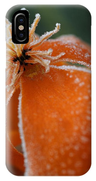 Natures Frost IPhone Case