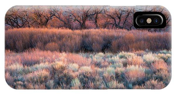 Foliage iPhone Case - Nature's Paintbrush by Mike Hitchner