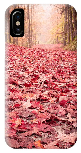New Hampshire iPhone Case - Nature's Red Carpet Revisited by Edward Fielding