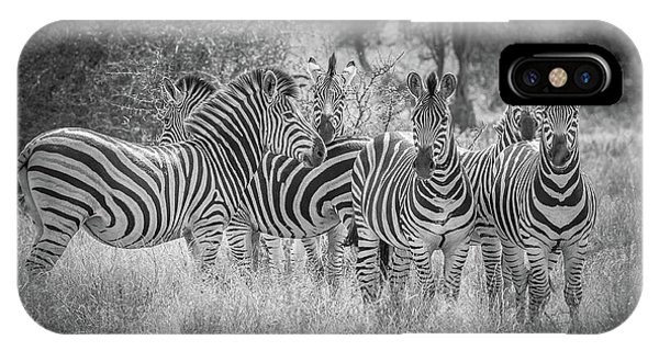 Stripe iPhone X Case - Nature's Referees by Jeffrey C. Sink