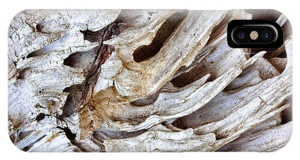 Nature's Sculpture-2 IPhone Case