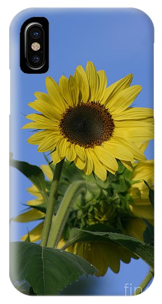 Nature's Sunshine IPhone Case