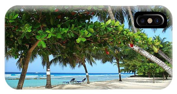 Natures Umbrella Tree IPhone Case
