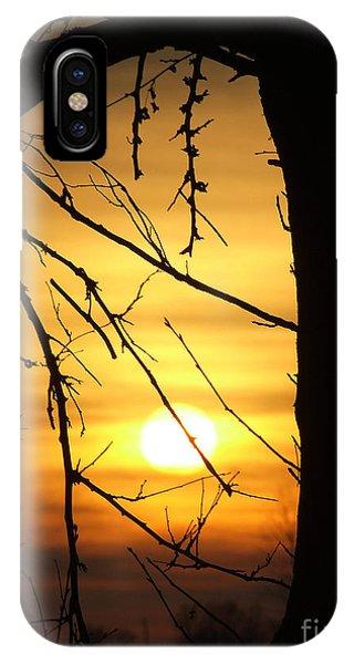 Natures Window IPhone Case