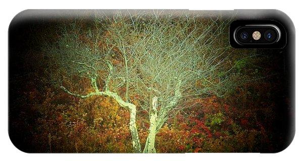 Neat Tree IPhone Case