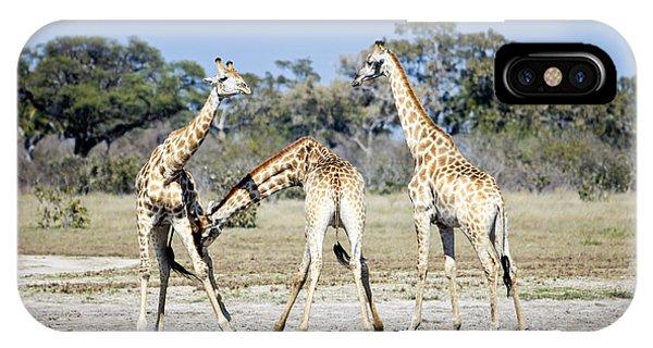 Necking Giraffes Botswana IPhone Case