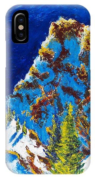 Needles 2 IPhone Case