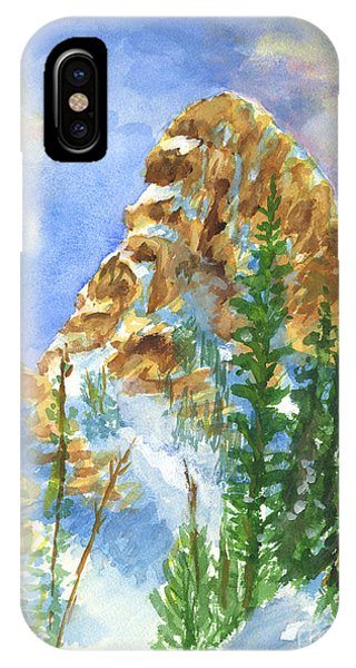 Needles IPhone Case