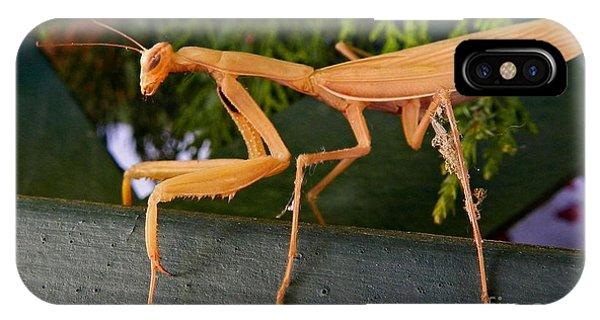 Neighborly Mantis IPhone Case