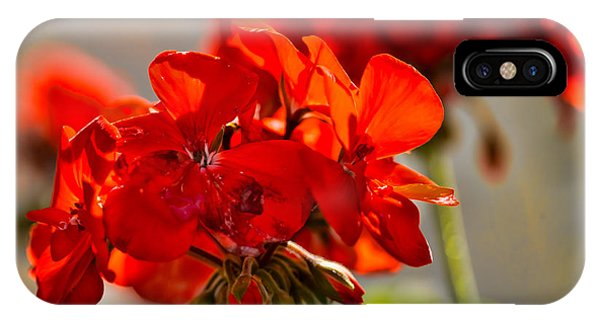 neighbour's flower DB IPhone Case