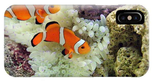 Scuba Diving iPhone Case - Nemo by Carey Chen