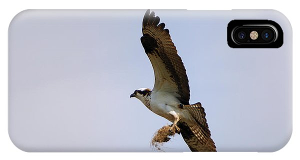 Osprey iPhone Case - Nest Builder by Mike  Dawson