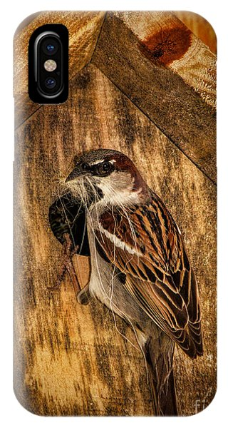 Nesting Time IPhone Case