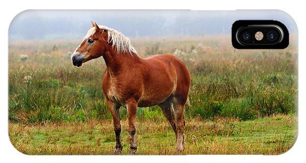 New Brunswick Horse IPhone Case