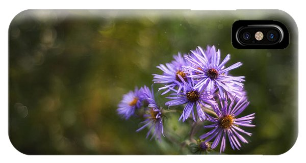 New England Asters IPhone Case