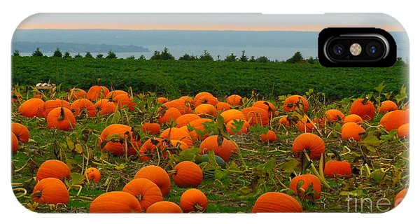 New England Pumpkin Patch Phone Case by Eclectic Captures