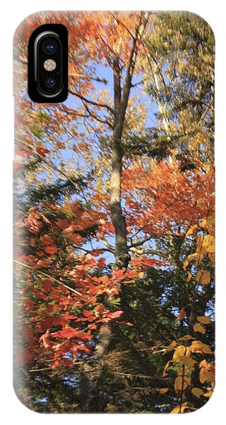 New England Trees IPhone Case