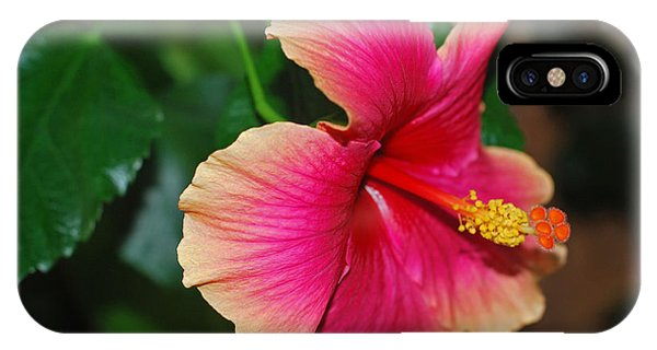 New Every Morning - Hibiscus IPhone Case