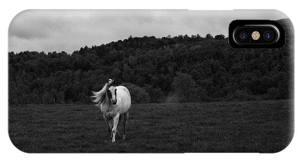 New Hampshire iPhone Case - New Hampshire Horse by Joseph Smith