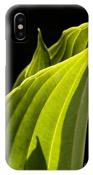 New Hosta IPhone Case