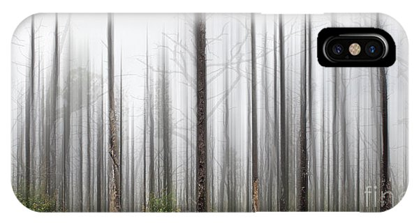 New Jersey Pine Barrens IPhone Case