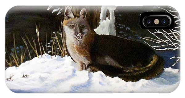 New Mexico Swift Fox IPhone Case