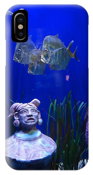 New Orleans Aquarium IPhone Case