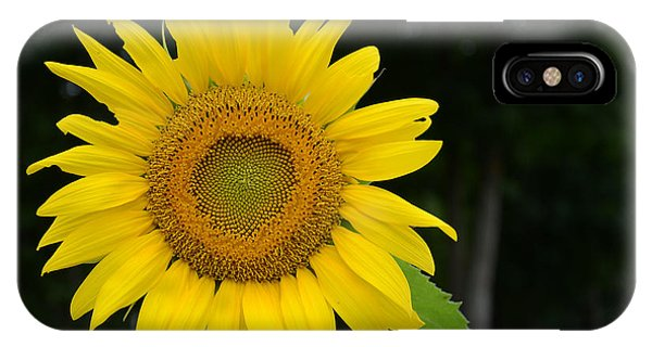 New Sun IPhone Case