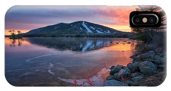 New Years Day Sunset With Berries IPhone Case