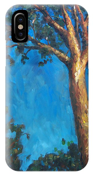 New Zealand Tree Phone Case by Susan Moore