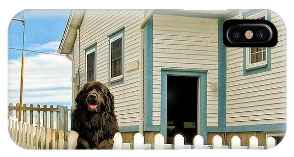 Newfoundland Dog In Newfoundland IPhone Case