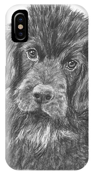 Newfoundland Puppy Sketch IPhone Case