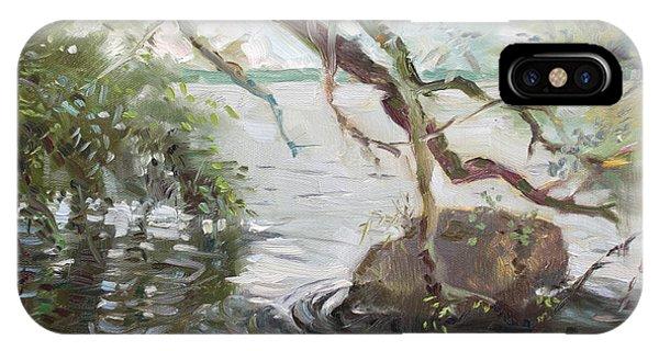 Seagull iPhone Case - Niagara River Side by Ylli Haruni