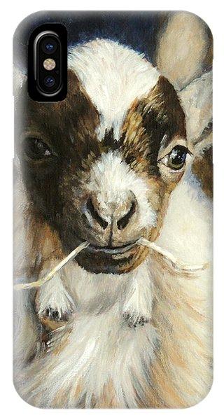Nigerian Dwarf Goat With Straw IPhone Case