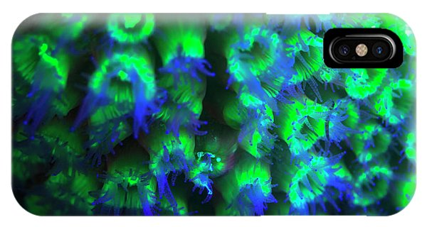Belize iPhone Case - Night Dive At Barrier Reef, Saint by Stuart Westmorland