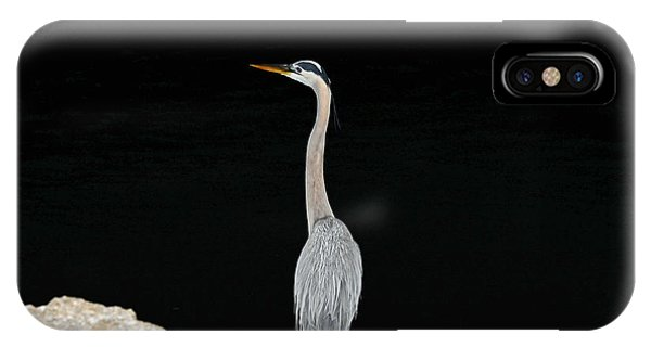 Night Of The Blue Heron 2 IPhone Case