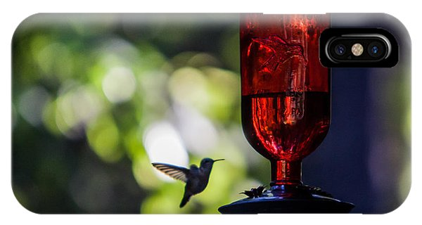 Humming Bird iPhone Case - Nightcap by Aaron Aldrich