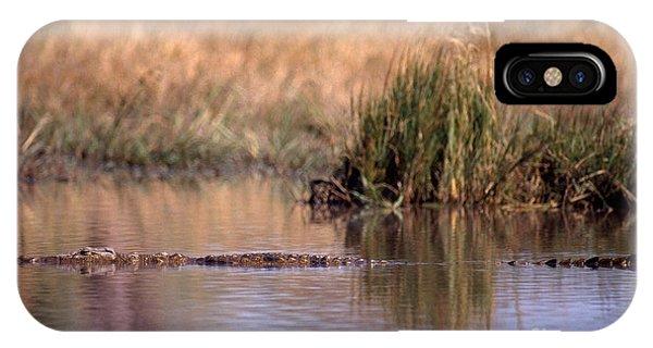 Nile Crocodile IPhone Case