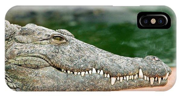 Crocodile iPhone Case - Nile Crocodile by Pascal Goetgheluck/science Photo Library