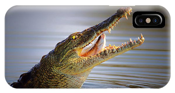 Open iPhone Case - Nile Crocodile Swollowing Fish by Johan Swanepoel